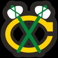 Alternate Logo B / 1999 > now